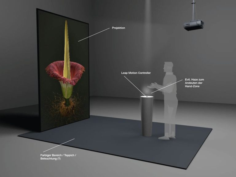 Niklaus Heeb, Alessandro Holler, Jonas Christen, Corps flower (titan arum), 2016, © Knowledge Visualization, ZHdK