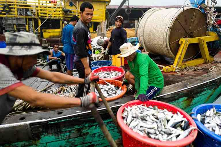 Malesia, settembre 2015. Fishermen in Palau Pangkor.