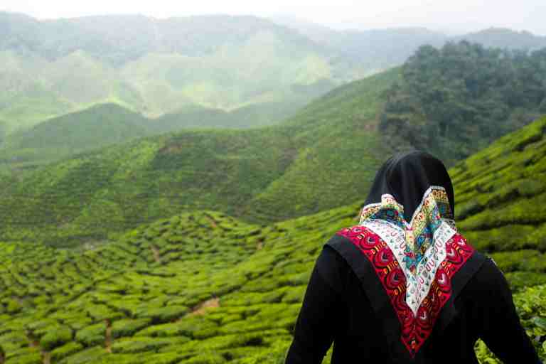 Malesia, settembre 2015. A woman enjoying the view at Cameron Highlands.