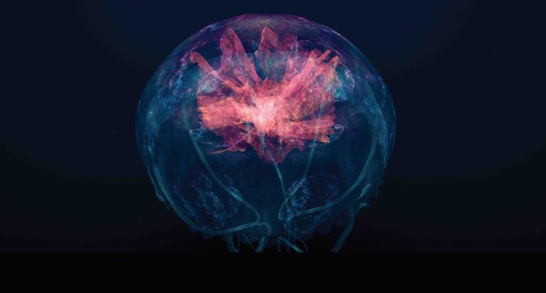"""""""Visualizzazione del suono in Virtual Reality"""". Credit: REDPILL VR - Marshmallow Laser Feast"""